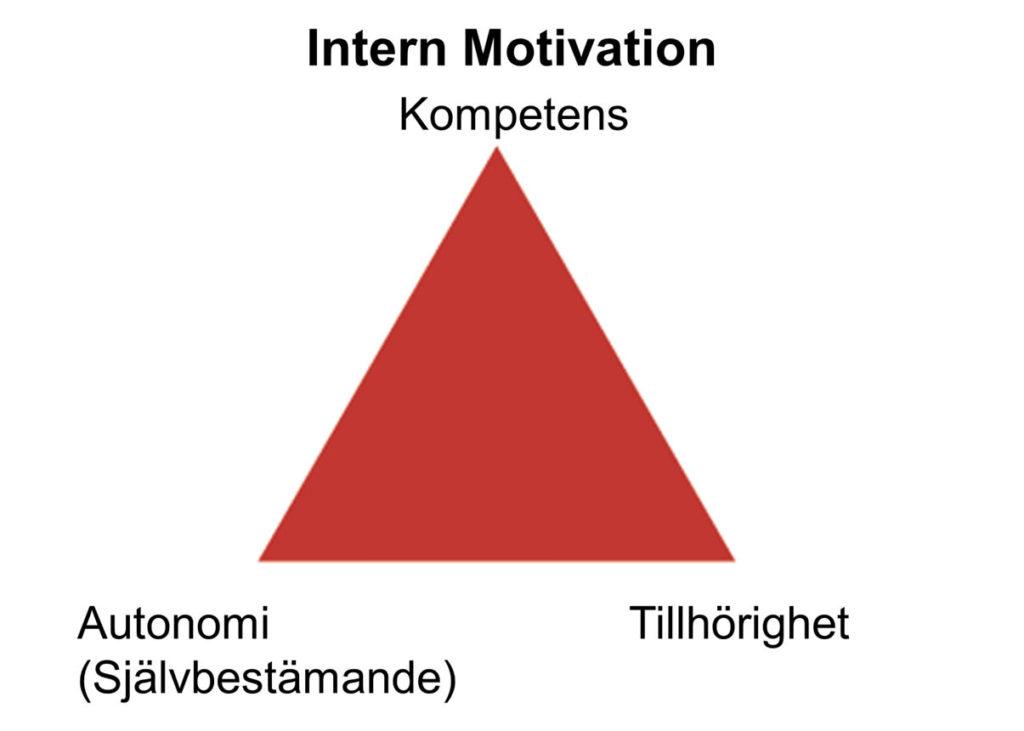 grundstenarna för all motivation